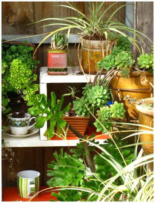 jardines-ideas-para-inspirarse
